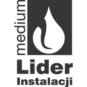 lider 1 300x300 MEDIUM Lider Instalacji 2012 dla FERRO
